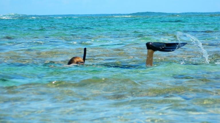 YogAlign Inner Breath Yoga Kauai Hawaii